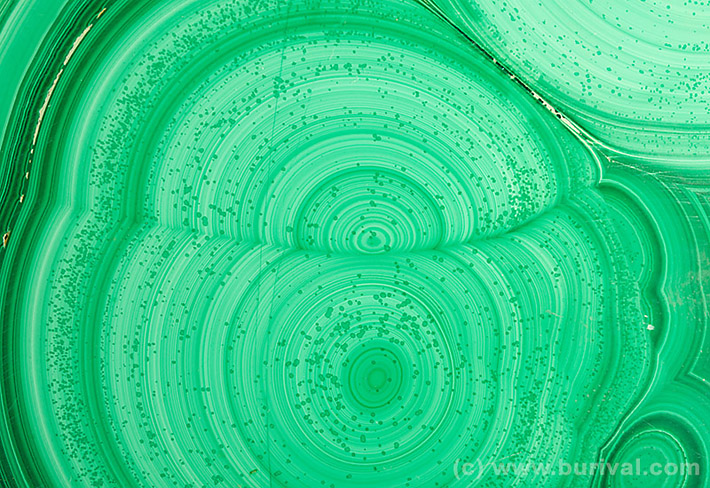 Polished slab of layered malachite from Katanga, Congo