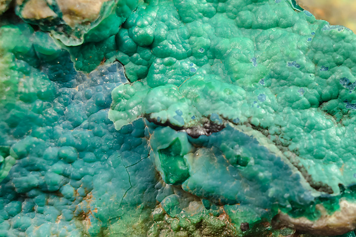Botryoidal aggregate of blue and green chrysocolla from Farbiste u Ponik in Slovakia