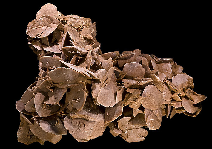 Lens shaped crystals of gypsum called desert rose from Tunisia
