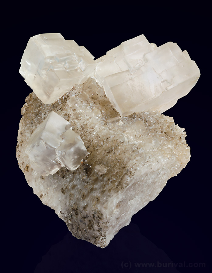 Huge cubic crystals of rock salt (halite) on salt matrix from Inowroclaw, Poland