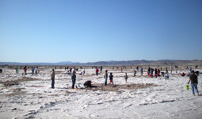 Searles Dry Lake near Trona, California is a non-marine evaporite deposit with various slats which formed in the desert
