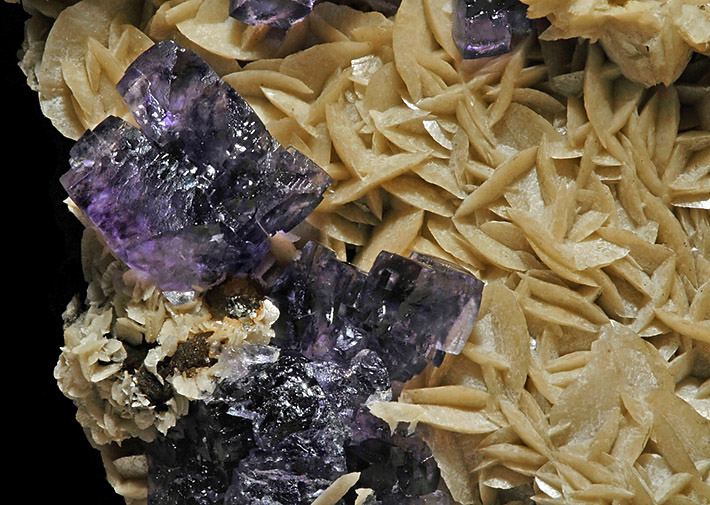 Pale brown siderite crystals with purple fluorite from Piaotang Mine, Jiangxi Province, China