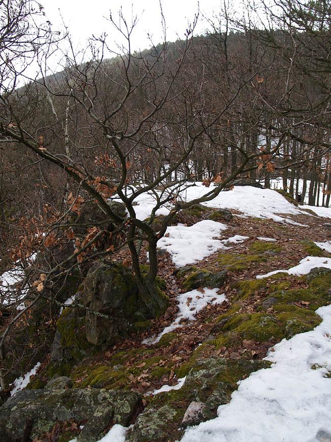 Tišnov, Květnice, Malá skála, Czech Republic