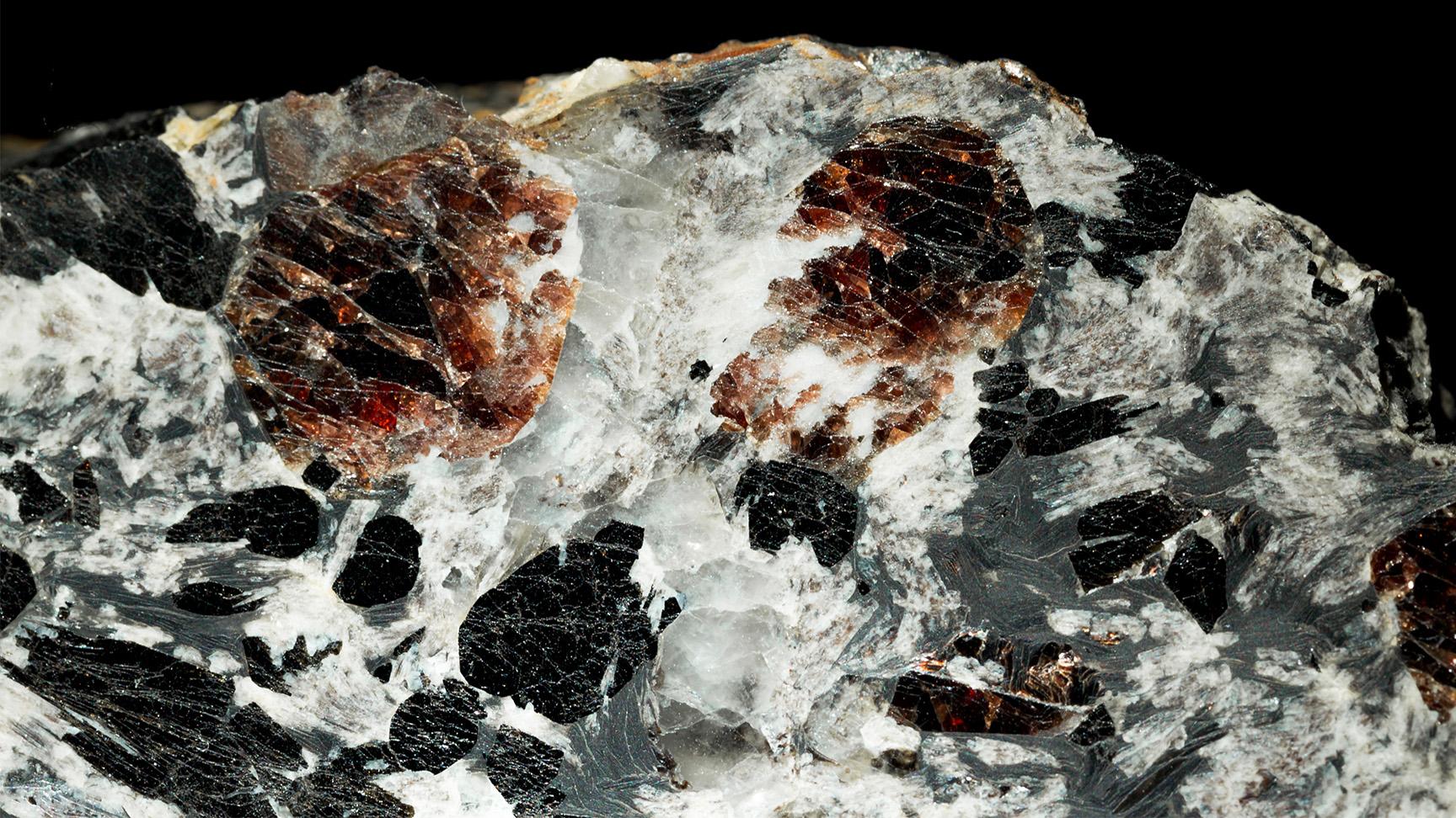 Almandine, Schorl, Feldspar, Quartz, Biotite