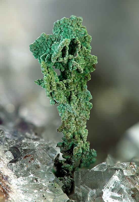 Copper, Brochantite