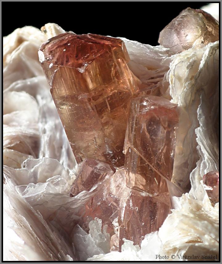 Elbaite (var. Rubellite), Lepidolite