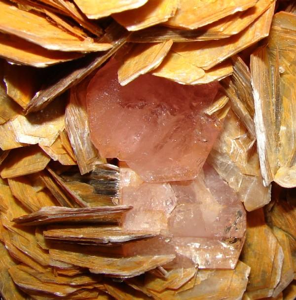 Fluorapatite, Muscovite