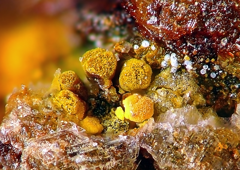 Jarosite, Opal, Gypsum