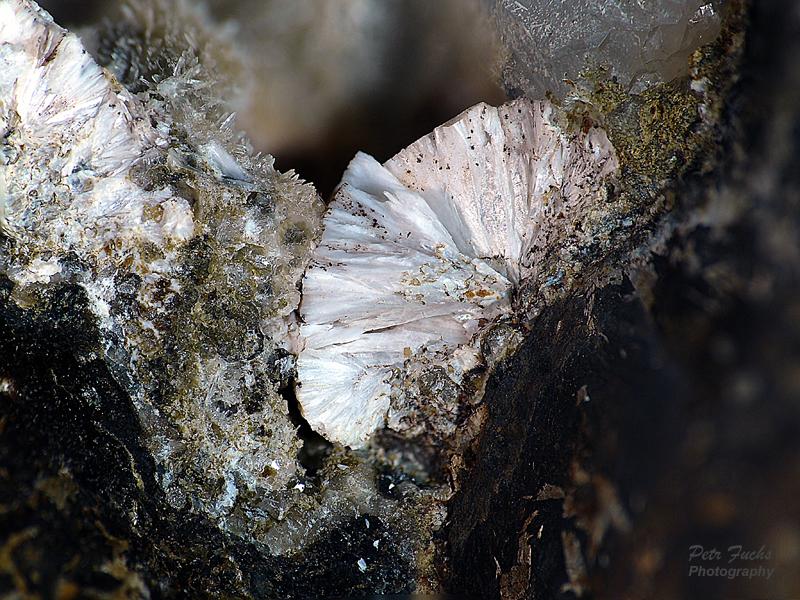 Zeophyllite