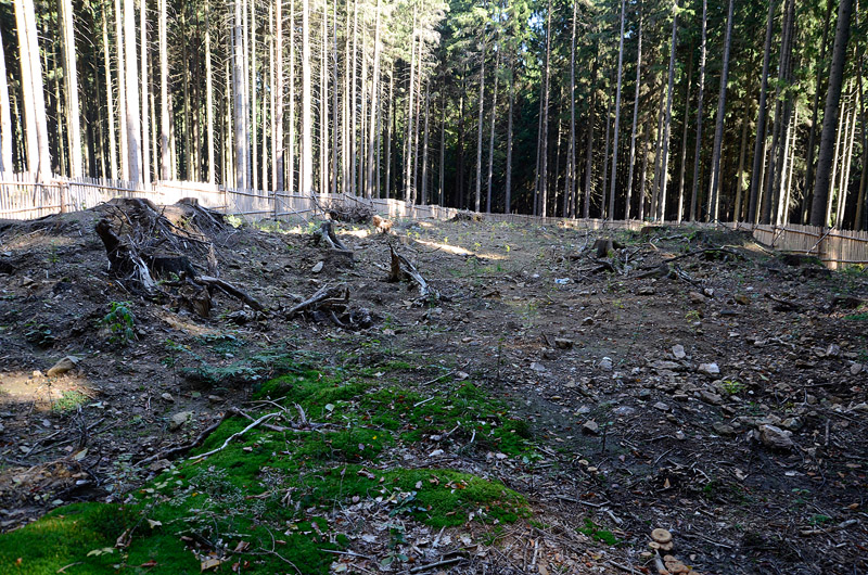 Vyskytná, Czech Republic
